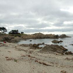 Coral Street Beach